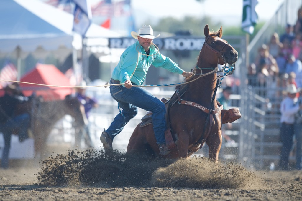Tie down at the Rancho Mission Viejo Rodeo