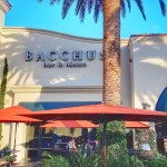 Girls Night Out at Bacchus