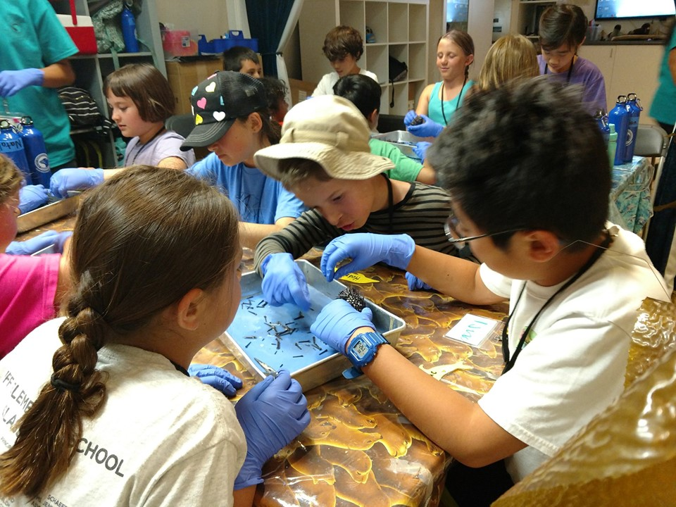 Students learning at the Pacific Marine Mammal Center