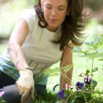 Backyard Improvements: How To Prepare Your Backyard For A Family Event