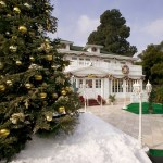Anaheim White House Tree Lighting Ceremony and Dinner