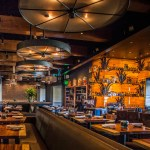 Solita Introduces New Fall Menu