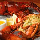 Bluewater Grills Boston-inspired Holiday Event