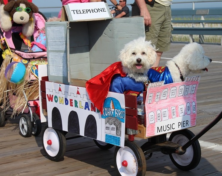 Howl-O-Ween Parade