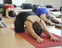Yoga pour le Dos – 5 séances du 10/11 au 15/12, le samedi de 16h30 à 18h