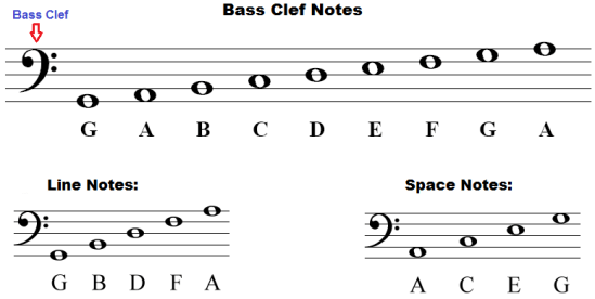 bass-clef-notes
