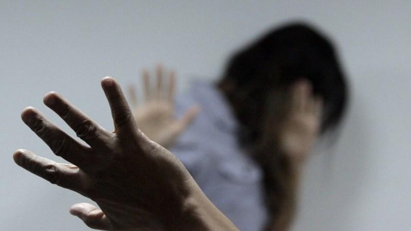 Alego: deputadas querem divulgação massiva do disque Direitos Humanos e Atendimento à Mulher em Goiás
