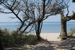 springers pt beach