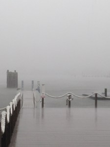 The NCCAT dock earlier this morning. Photo by C. Farley