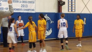 Lady Dolphins PS 2016-01-27 16.32.49
