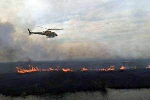 Helicopters are used to light burnout to eliminate fuel for the wildfire. (USFWS)