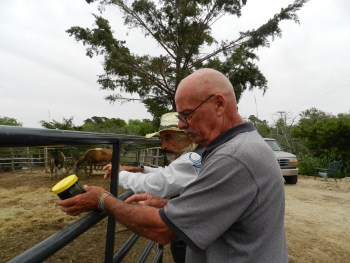 Mike Stockwell and Doc Mishler at Stockwells horse paddock.