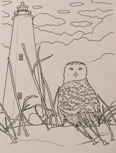 A page in Mary Vankevich's coloring book shows the island's famous lighthouse and the snowy owl, two of which made rare appearances here in the winter of 2014.