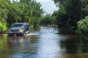 Cars and bicycles navigate deep waters on Sunset Drive. Photo: C. Leinbach