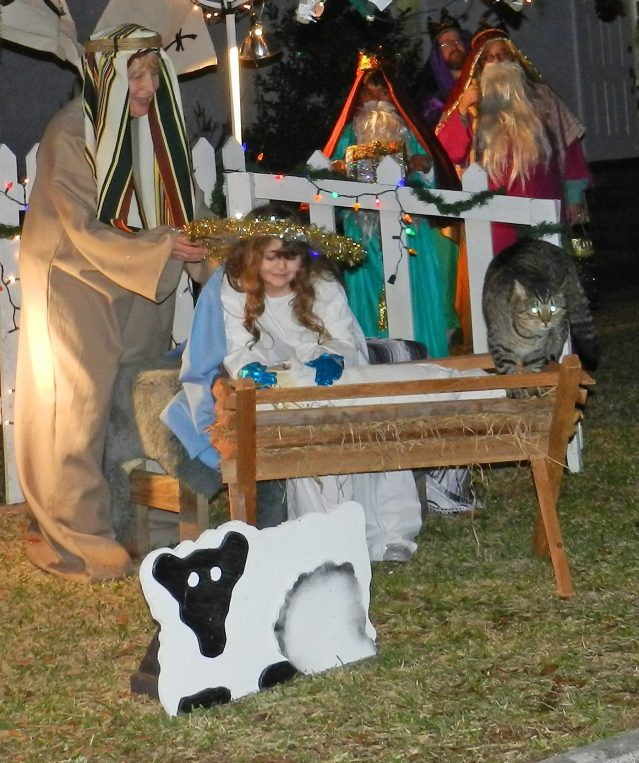 Bob the Ocracat joins in the live Nativity.