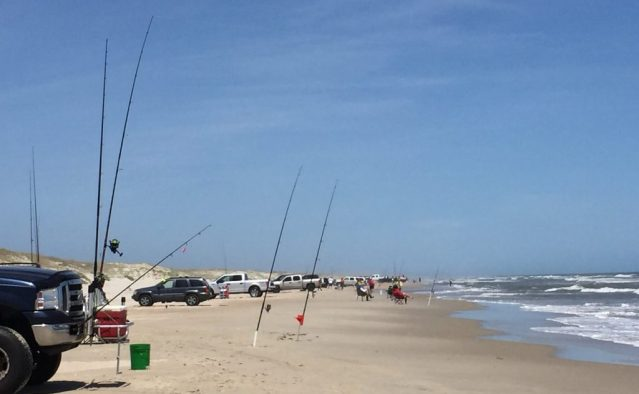 Anglers fill the Ocracoke beach during the 2018 Ocracoke Invitational Surf Fishing Tournament. Photo: C. Leinbach