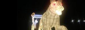 Image: Okehampton Lanterns procession