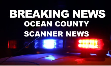 Toms River: 2 subjects passed out in a vehicle