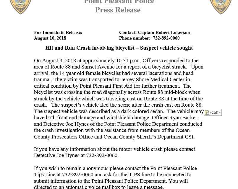 PP Borough: Hit & Run- Police Press Release!