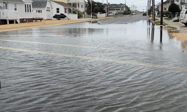 SEASIDE PARK: Here Come the Floods!