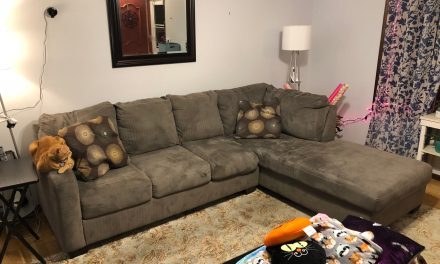 Toms River East: Couch $50- MUST TAKE TODAY!