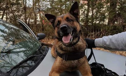 Shooting Victim had criminal history, K9 released from hospital