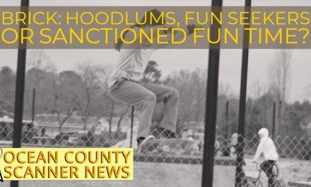 BRICK: Hoodlums, Fun Seekers or Sanctioned Fun Time?