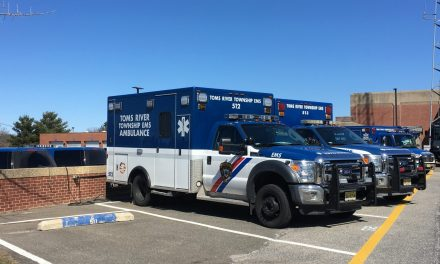 Toms River: Knee Injury from Dog Fight