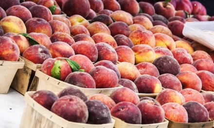Fruit recalled from Walmart, Costco, and Aldi over listeria concerns in NJ