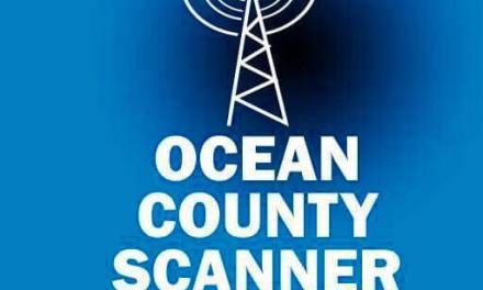 OCSN: Winter Intern & Volunteer Program is NOW OPEN!