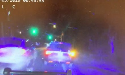 STAFFORD: Driver Collides With Police Vehicle, Arrested For DWI