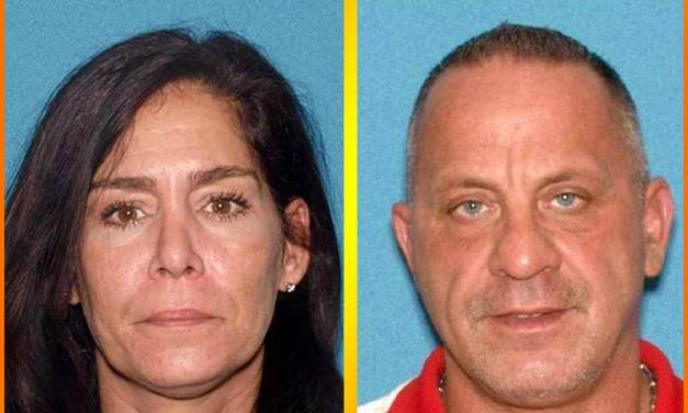 BRICK: Distribution of Heroin, Suboxone, Morphine and Child Endangerment