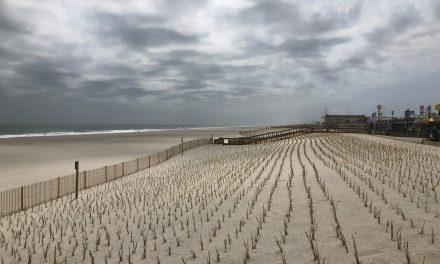 SSH: Preparations for Summer & New Dunes