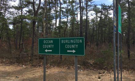 Woodland Township: Missing Female Juvenile