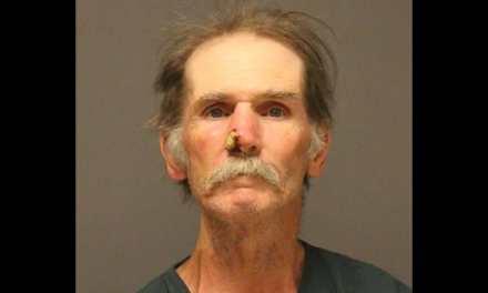 BRICK: Suspect Arrested In Shore Area Food Market Burglary