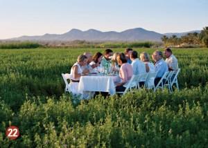 Farm to table feast