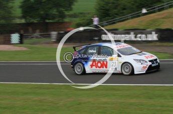 © Octane Photographic Ltd. 2010. British Touring Car Championship – Oulton Park. Saturday 5th June 2010. Digital Ref : 0125CB7D3410