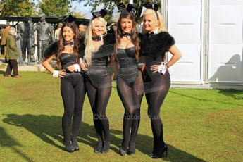 © Octane Photographic 2011 – Goodwood Revival 18th September 2011. The Goodwood Bunny Girls. Digital Ref : 0179cb1d4697