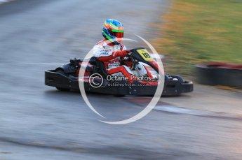 © Octane Photographic Ltd. 2011. Milton Keynes Daytona Karting, Forget-Me-Not Hospice charity racing. Sunday October 30th 2011. Digital Ref : 0194cb7d0045