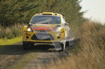 © North One Sport Ltd 2011 / Octane Photographic Ltd 2011. 13th November 2011 Wales Rally GB, WRC SS21 Halfway. Henning Solberg and Ilka Minor in their Ford Fiesta RS WRC, Digital Ref : 0200CB1D9708