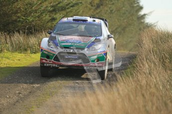 © North One Sport Ltd 2011 / Octane Photographic Ltd 2011. 13th November 2011 Wales Rally GB, WRC SS21 Halfway. Evgeny Novikov and Denis Giraudet in their Ford Fiesta RS WRC. Digital Ref : 0200CB1D9755