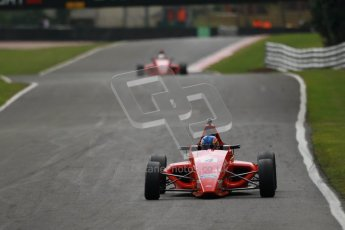 © 2012 Octane Photographic Ltd. Saturday 7th April. Dunlop MSA Formula Ford - Race 1. Digital Ref : 0282lw1d3417