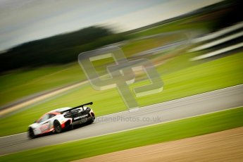 © Chris Enion/Octane Photographic Ltd 2012. FIA GT1 Championship, Donington Park, Sunday 30th September 2012. Digital Ref : 0533ce1d0112