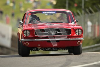 © 2012 Octane Photographic Ltd. HSCC Historic Super Prix - Brands Hatch - 1st July 2012. HSCC - Historic Touring Cars - Qualifying. Warren Briggs - Ford Mustang. Digital Ref: 0384lw1d1091