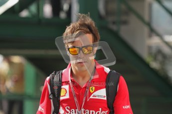 © 2012 Octane Photographic Ltd. Hungarian GP Hungaroring - Saturday 28th July 2012 - F1 Practice 3. Ferrari F2012 - Fernando Alonso. Digital Ref : 0429lw7d5903