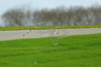 World © Octane Photographic Ltd. Donington Park General Unsilenced Testing 5th December 2013. Digital ref : 0873cb1dx8651