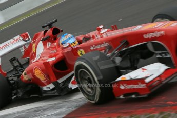 World © Octane Photographic Ltd. F1 German GP - Nurburgring. Friday 5th July 2013 - Practice two. Scuderia Ferrari F138 - Fernando Alonso. Digital Ref : 0741lw1d4597