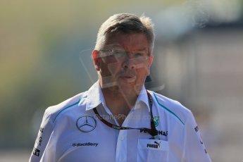 World © Octane Photographic Ltd. F1 Hungarian GP - Hungaroring. Friday 26th July 2013. F1 Paddock - Ross Brawn - Mercedes AMG Petronas F1 . Digital Ref : 0757lw1d0729