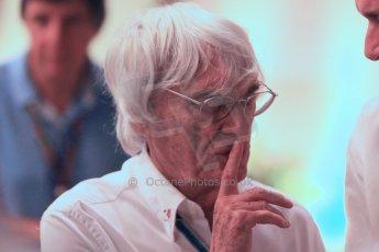 World © Octane Photographic Ltd. 2014 Formula 1 Abu Dhabi Grand Prix, F1 Qualifying, Saturday 22nd November 2014. Bernie Ecclestone. Digital Ref : 1166CB1D9026