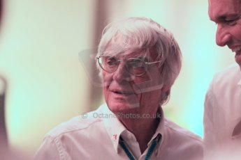 World © Octane Photographic Ltd. 2014 Formula 1 Abu Dhabi Grand Prix, F1 Qualifying, Saturday 22nd November 2014. Bernie Ecclestone. Digital Ref : 1166CB1D9040
